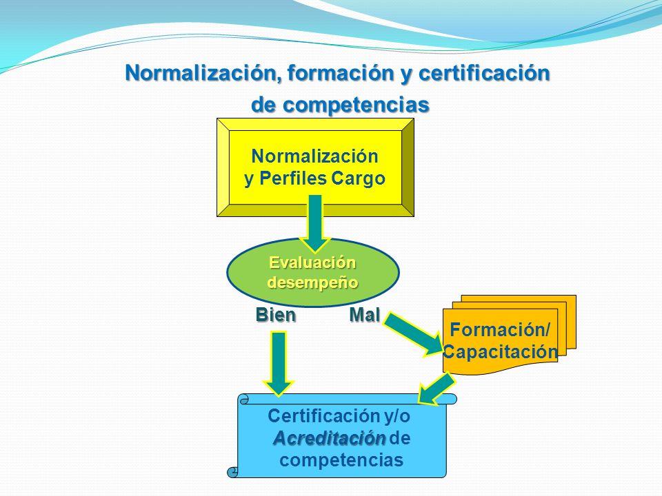 Normalización, formación y certificación de competencias