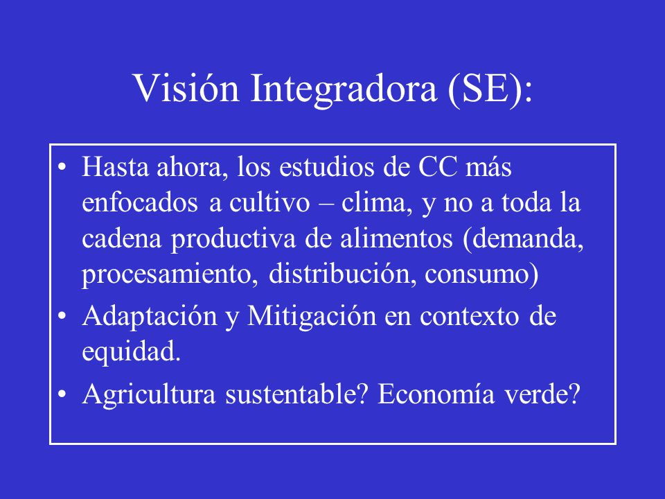 Visión Integradora (SE):