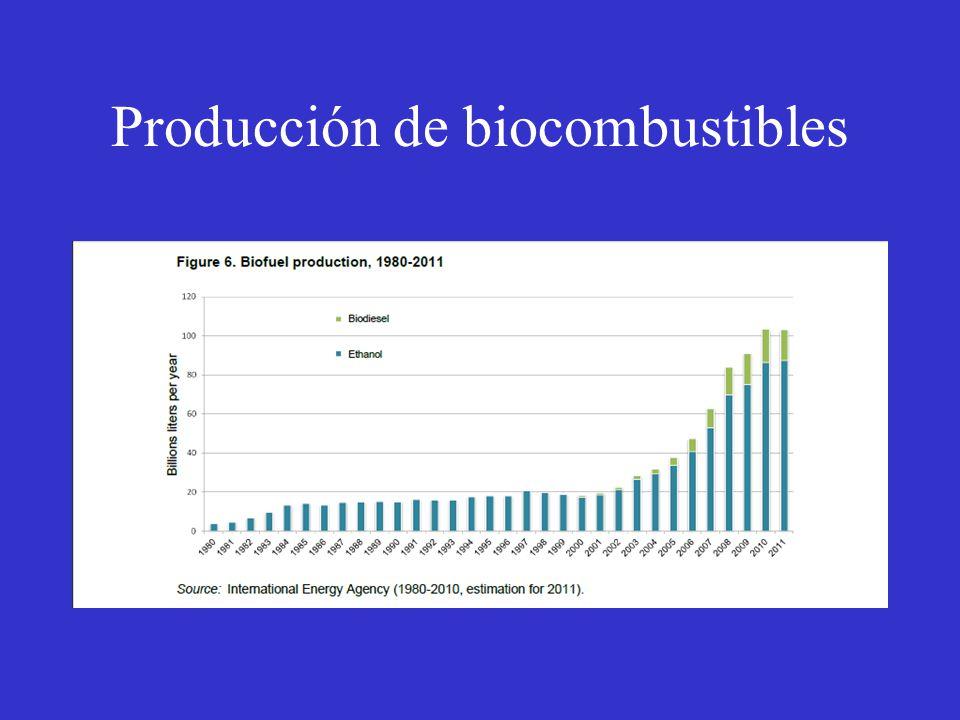 Producción de biocombustibles
