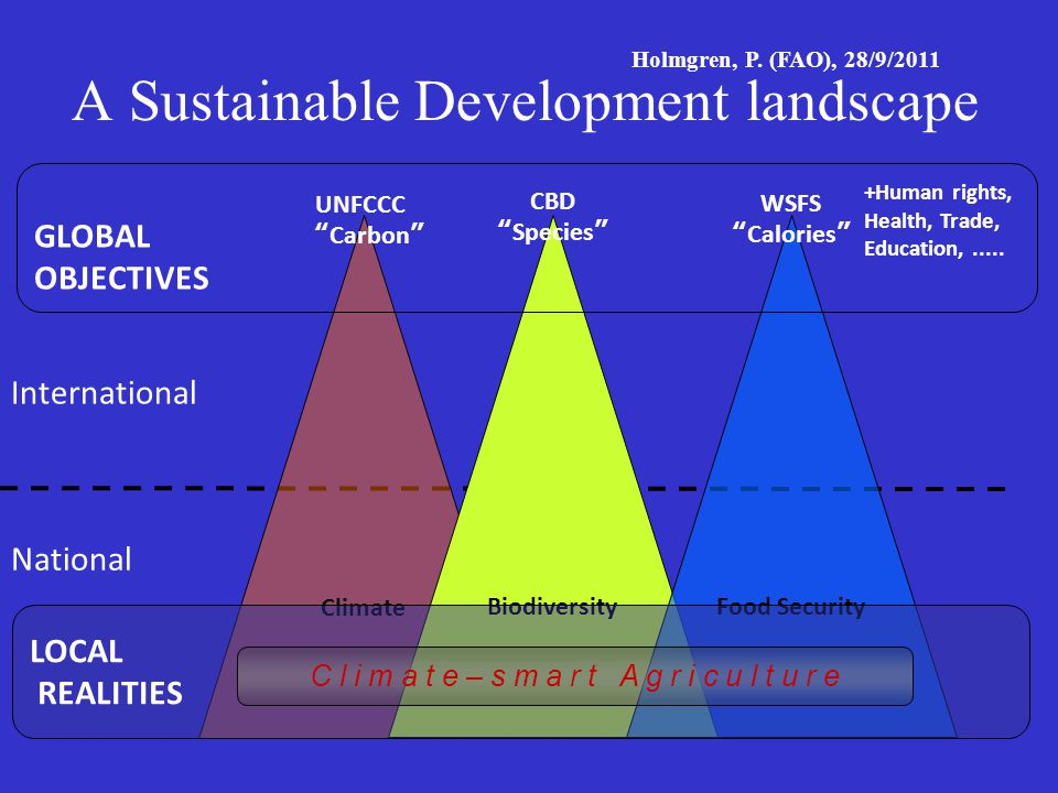 A Sustainable Development landscape