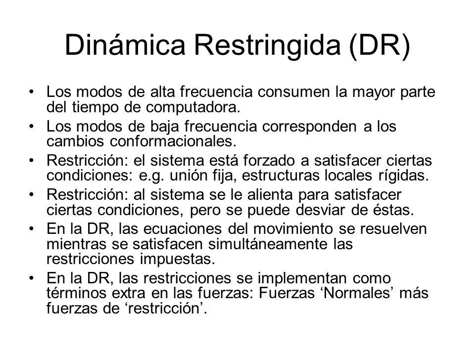 Dinámica Restringida (DR)