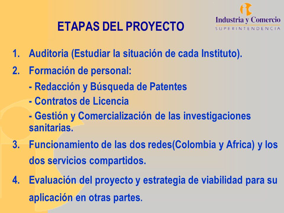 ETAPAS DEL PROYECTO Auditoria (Estudiar la situación de cada Instituto). Formación de personal: - Redacción y Búsqueda de Patentes.