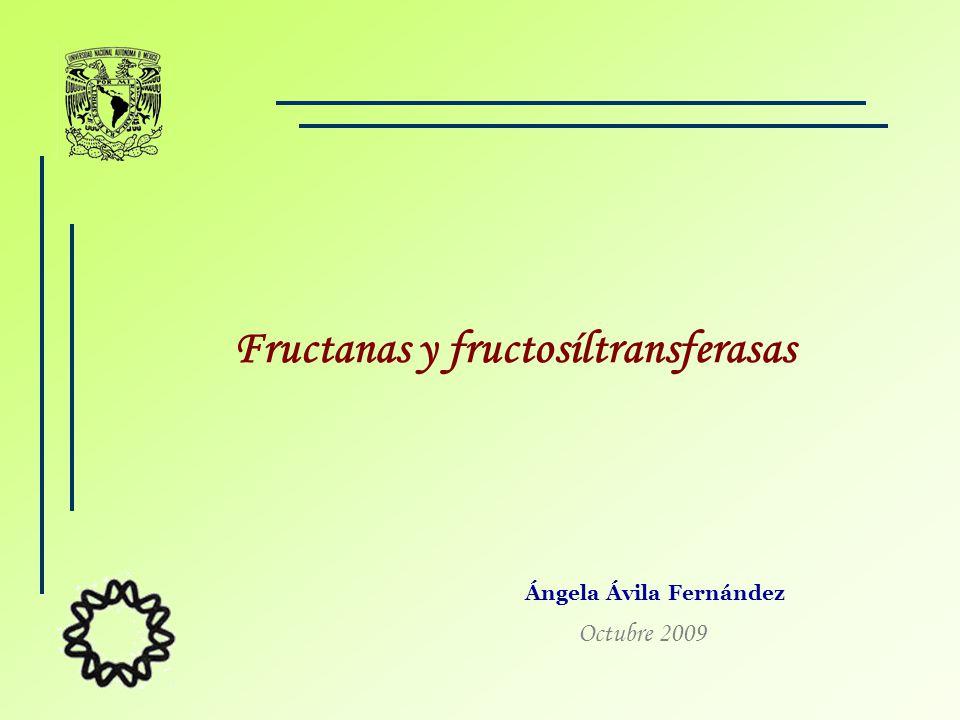 Fructanas y fructosíltransferasas