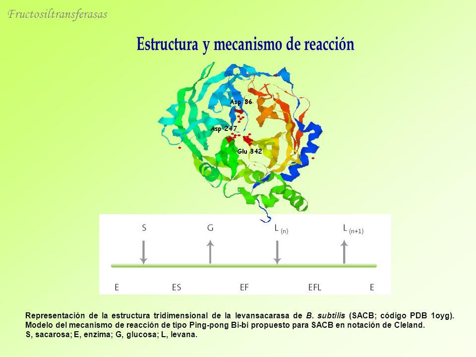 Estructura y mecanismo de reacción