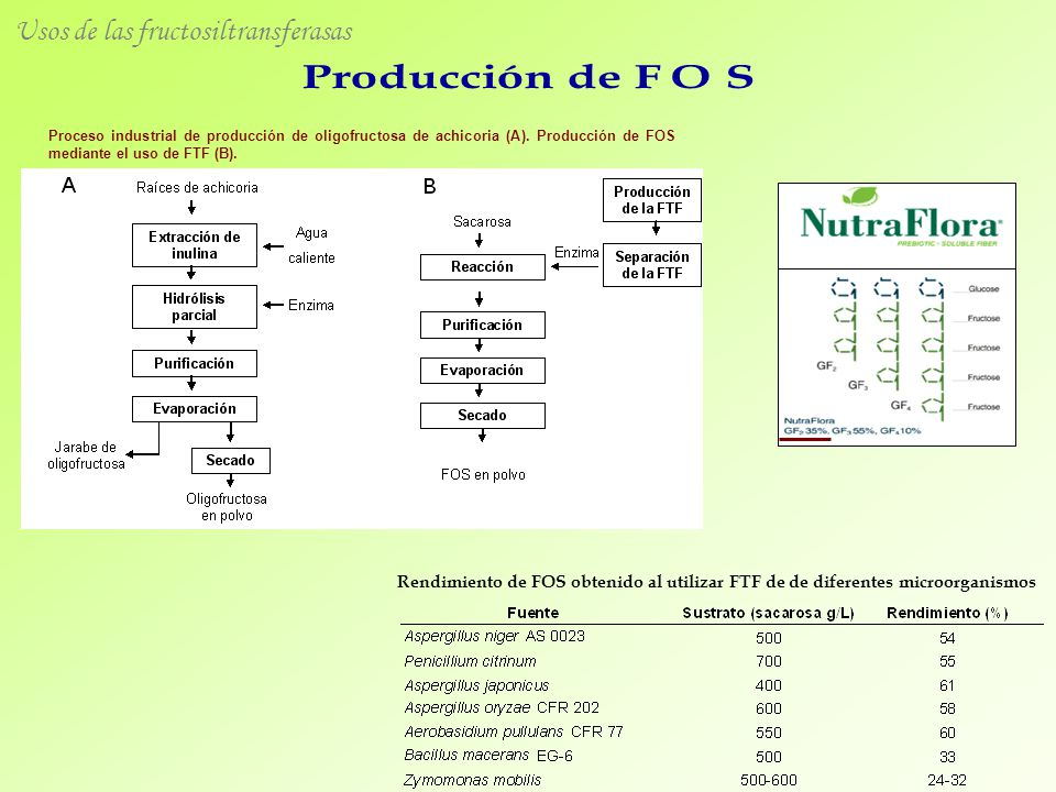 Usos de las fructosiltransferasas
