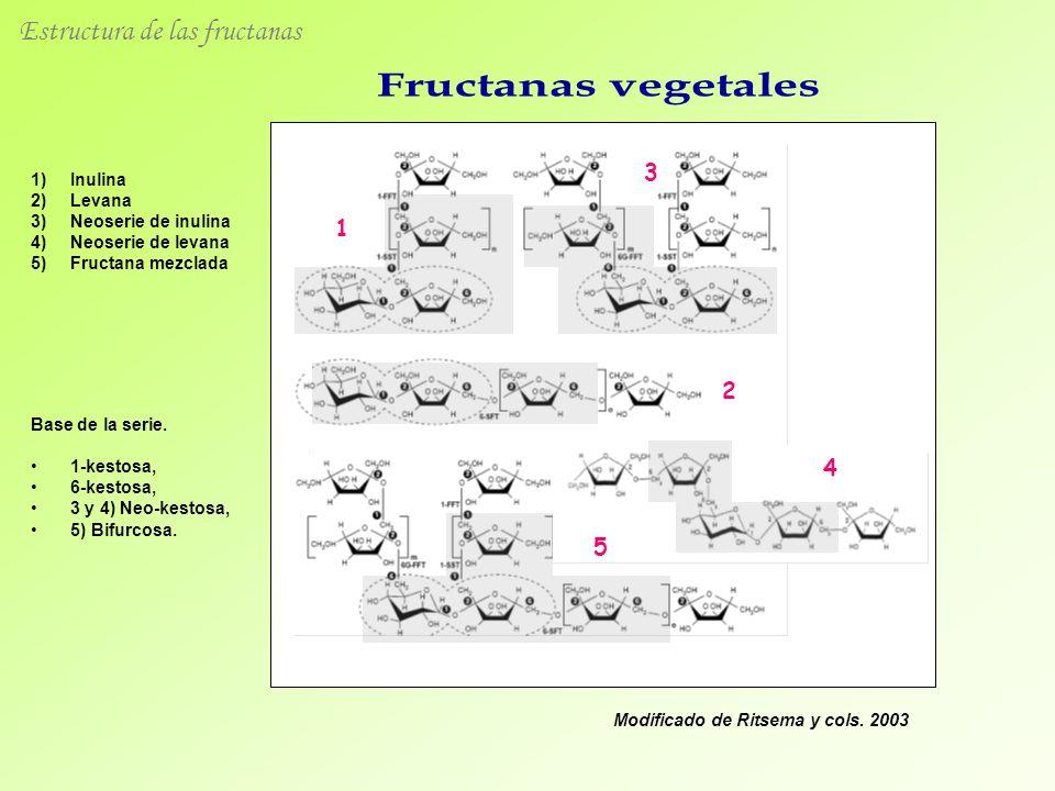 Estructura de las fructanas