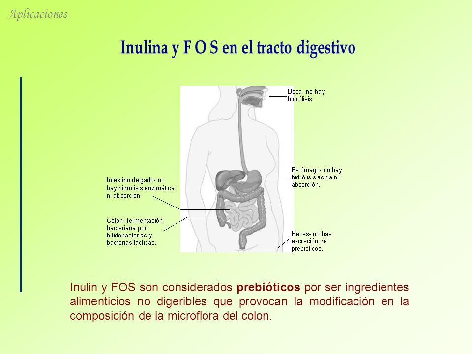 Inulina y F O S en el tracto digestivo
