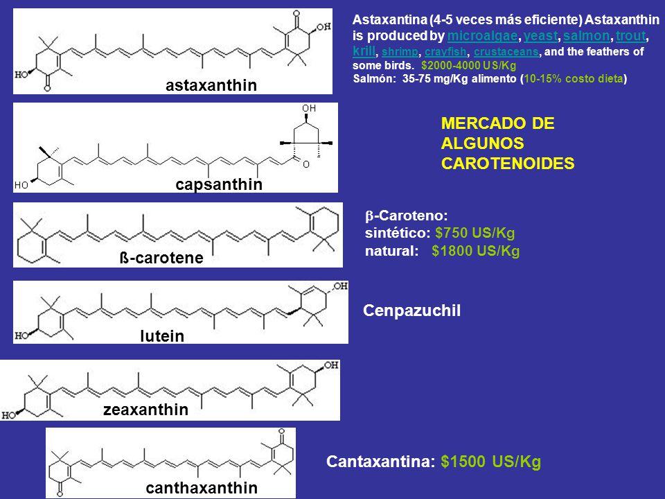MERCADO DE ALGUNOS CAROTENOIDES