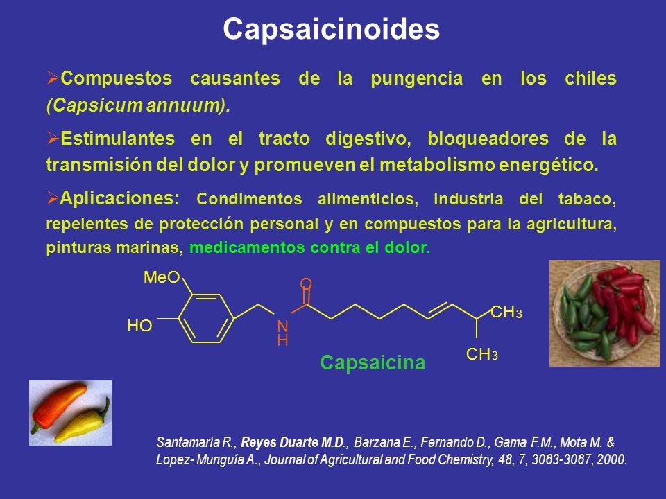 Capsaicinoides Capsaicina