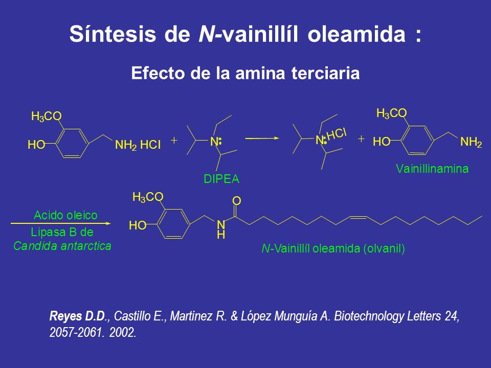 Síntesis de N-vainillíl oleamida : Efecto de la amina terciaria