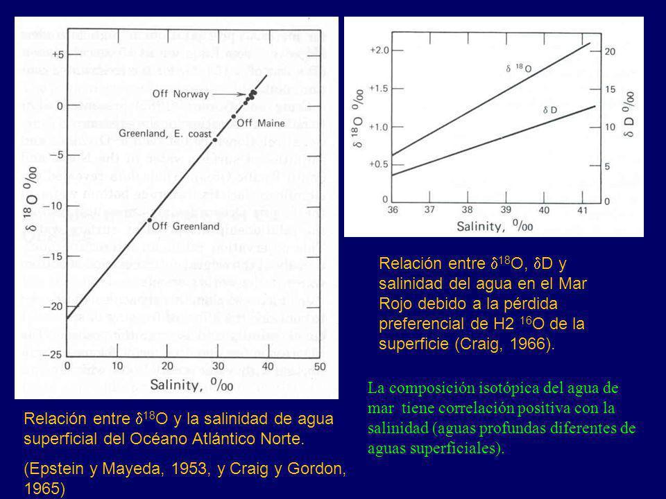 Relación entre d18O, dD y salinidad del agua en el Mar Rojo debido a la pérdida preferencial de H2 16O de la superficie (Craig, 1966).