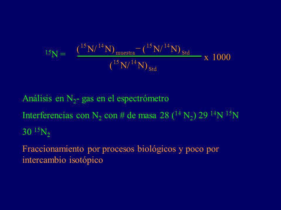 Análisis en N2- gas en el espectrómetro
