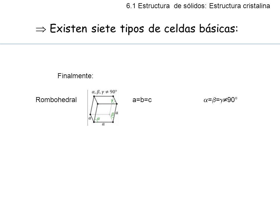  Existen siete tipos de celdas básicas:
