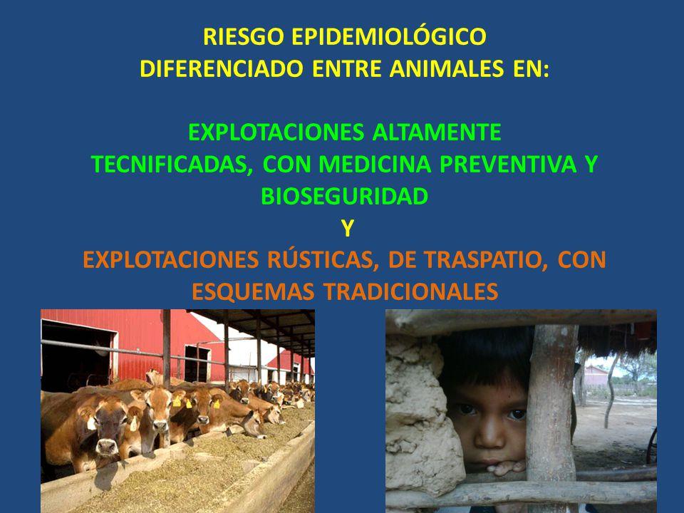 RIESGO EPIDEMIOLÓGICO DIFERENCIADO ENTRE ANIMALES EN: EXPLOTACIONES ALTAMENTE TECNIFICADAS, CON MEDICINA PREVENTIVA Y BIOSEGURIDAD Y EXPLOTACIONES RÚSTICAS, DE TRASPATIO, CON ESQUEMAS TRADICIONALES