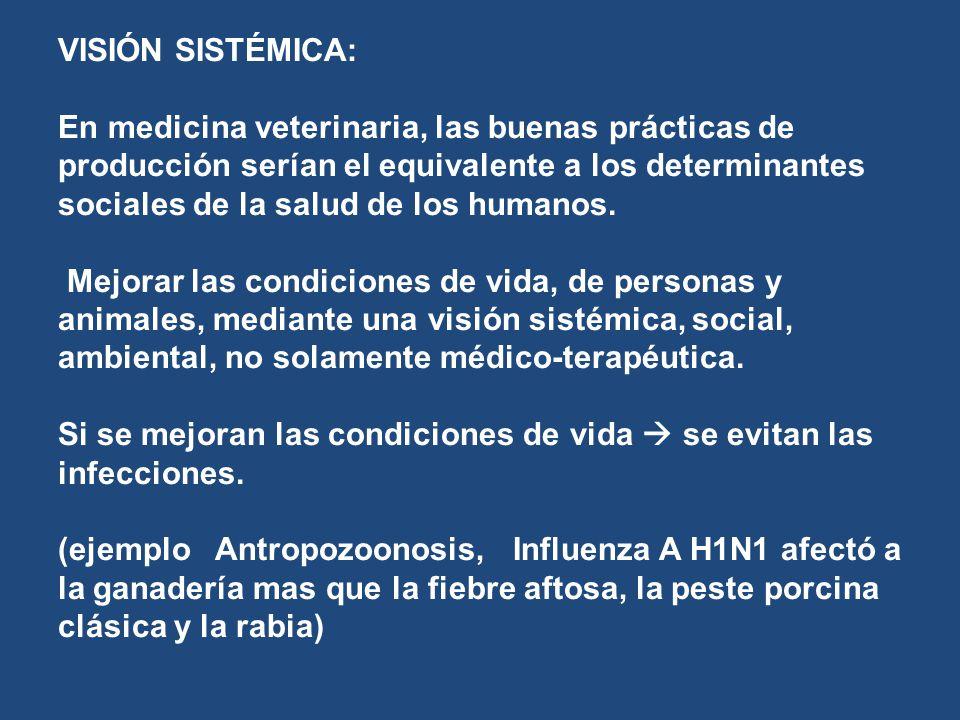 VISIÓN SISTÉMICA: En medicina veterinaria, las buenas prácticas de producción serían el equivalente a los determinantes sociales de la salud de los humanos.
