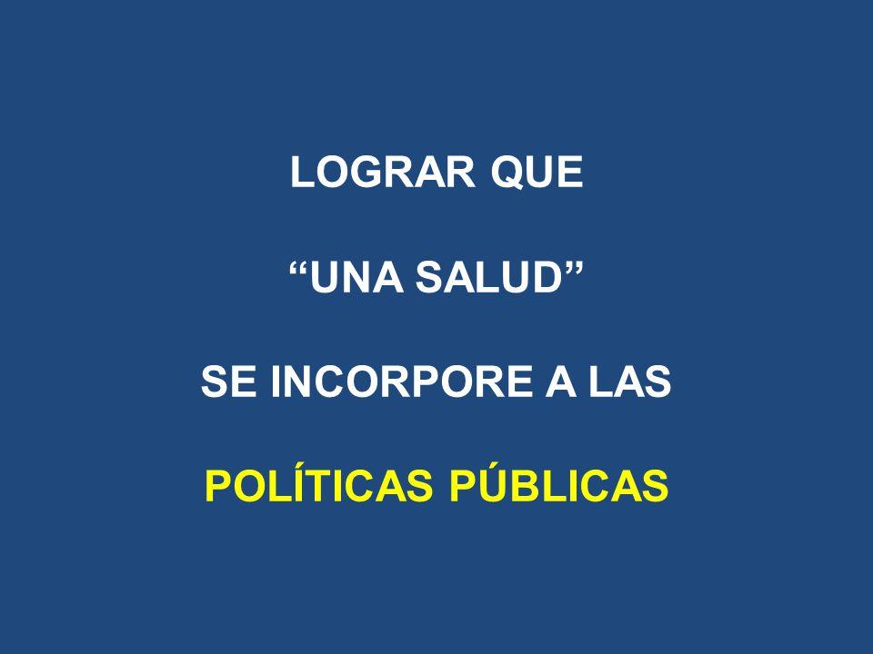 LOGRAR QUE UNA SALUD SE INCORPORE A LAS POLÍTICAS PÚBLICAS
