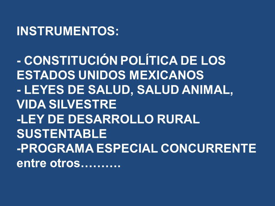 INSTRUMENTOS: - CONSTITUCIÓN POLÍTICA DE LOS ESTADOS UNIDOS MEXICANOS - LEYES DE SALUD, SALUD ANIMAL, VIDA SILVESTRE -LEY DE DESARROLLO RURAL SUSTENTABLE -PROGRAMA ESPECIAL CONCURRENTE entre otros……….