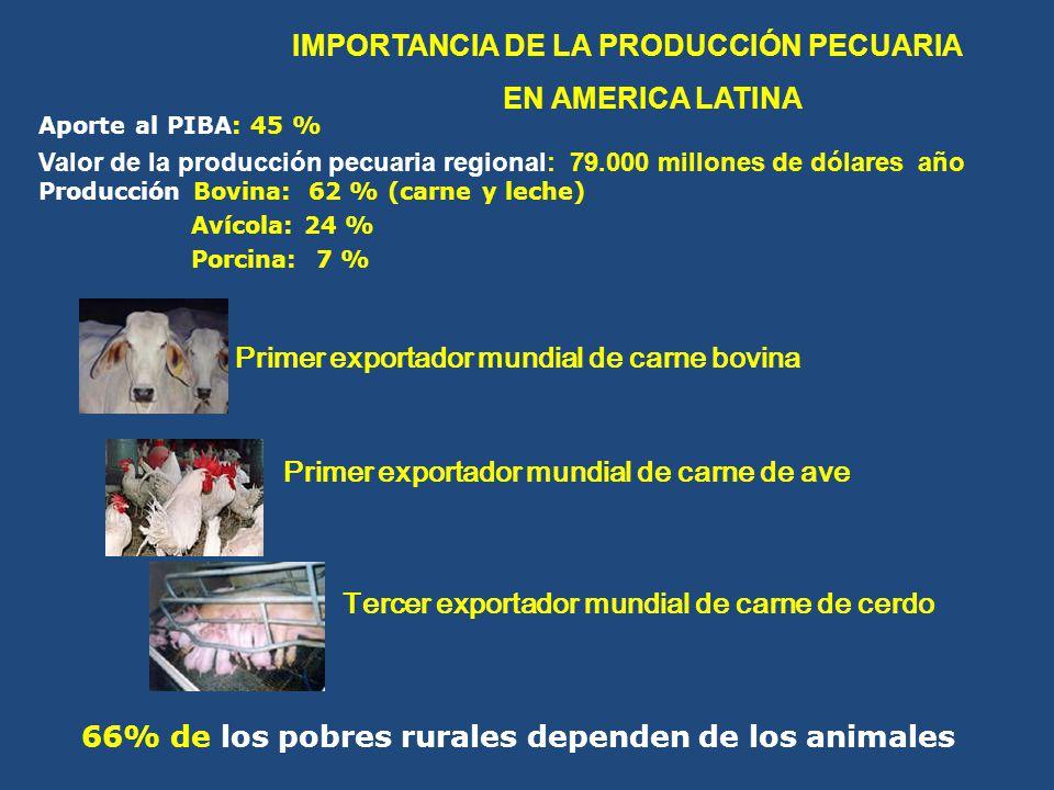 IMPORTANCIA DE LA PRODUCCIÓN PECUARIA EN AMERICA LATINA