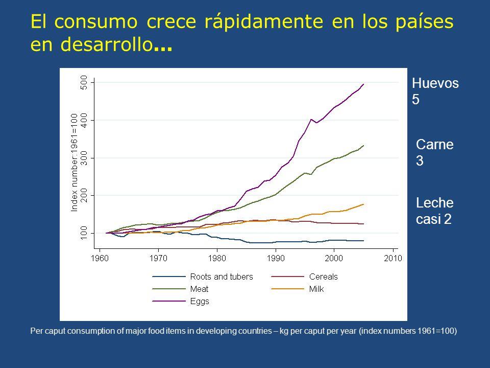 El consumo crece rápidamente en los países en desarrollo...