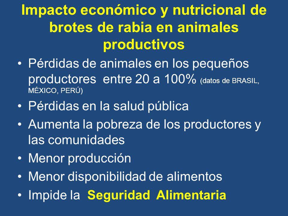 Impacto económico y nutricional de brotes de rabia en animales productivos
