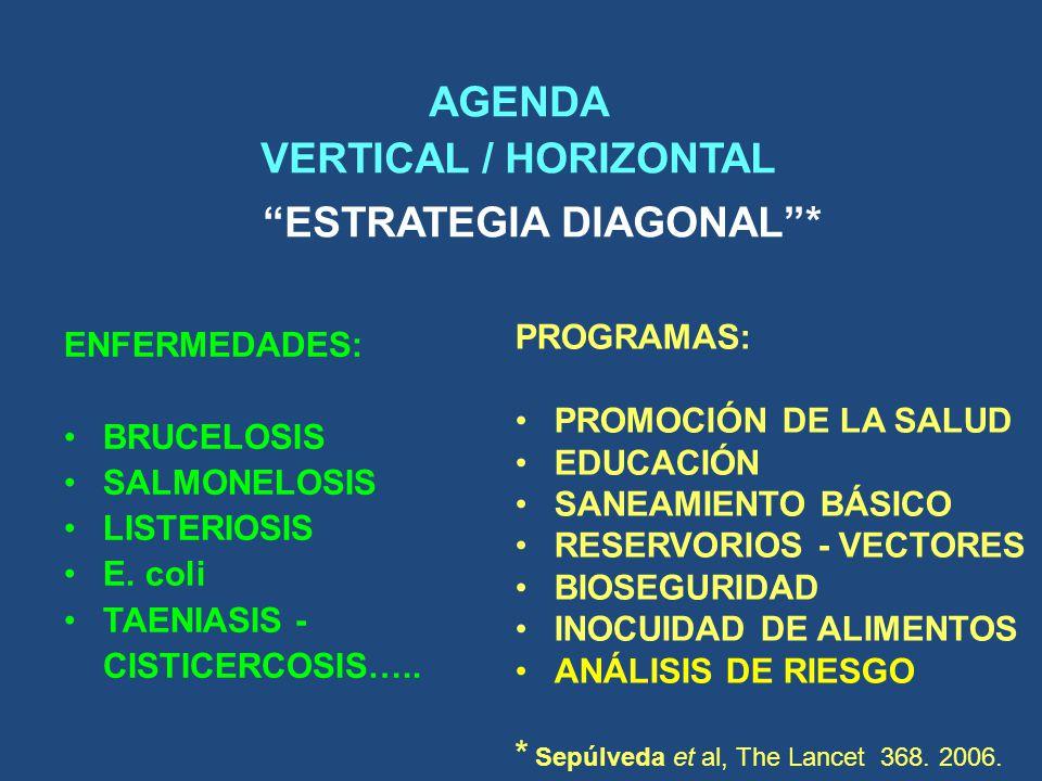 AGENDA VERTICAL / HORIZONTAL ESTRATEGIA DIAGONAL *
