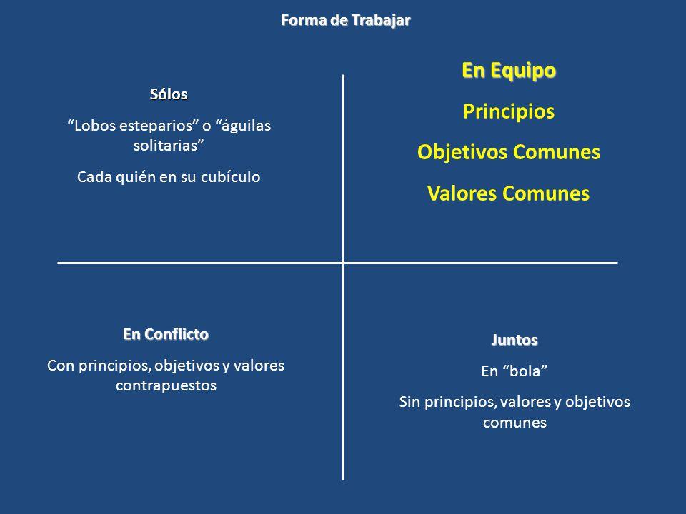 En Equipo Principios Objetivos Comunes Valores Comunes