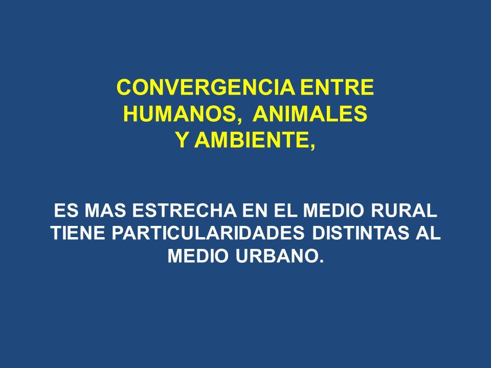 CONVERGENCIA ENTRE HUMANOS, ANIMALES Y AMBIENTE, ES MAS ESTRECHA EN EL MEDIO RURAL TIENE PARTICULARIDADES DISTINTAS AL MEDIO URBANO.