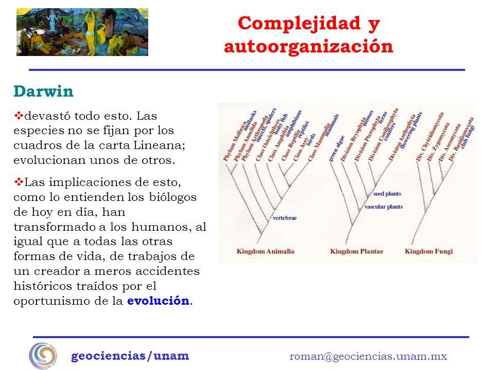 Darwin devastó todo esto. Las especies no se fijan por los cuadros de la carta Lineana; evolucionan unos de otros.