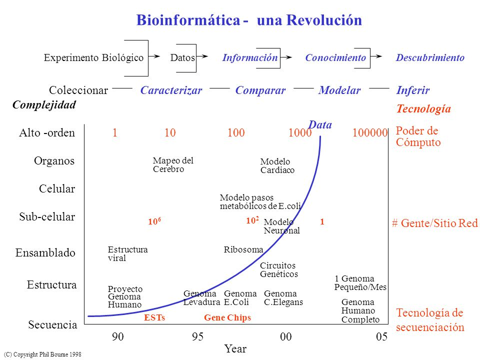 Bioinformática - una Revolución