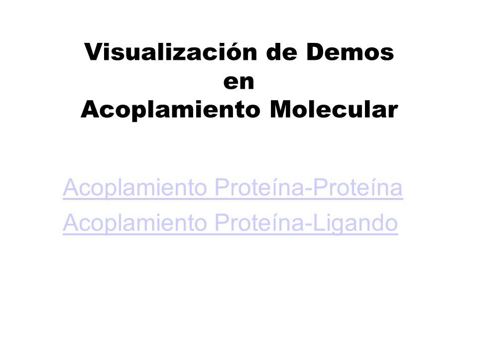 Visualización de Demos en Acoplamiento Molecular
