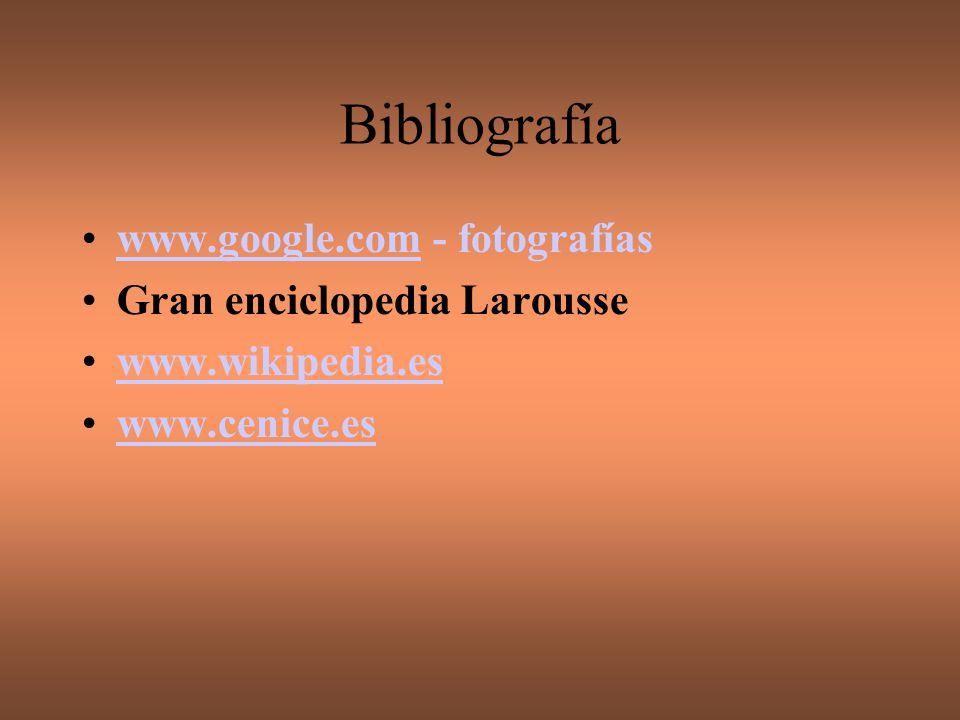 Bibliografía www.google.com - fotografías Gran enciclopedia Larousse