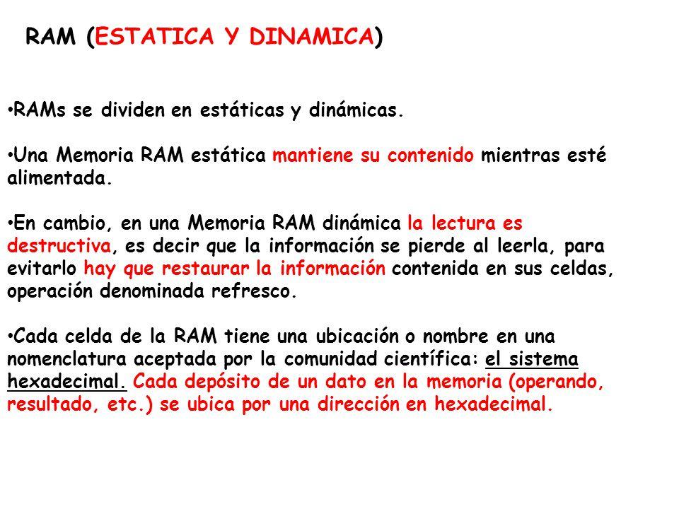 RAM (ESTATICA Y DINAMICA)