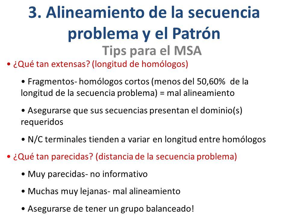 3. Alineamiento de la secuencia problema y el Patrón
