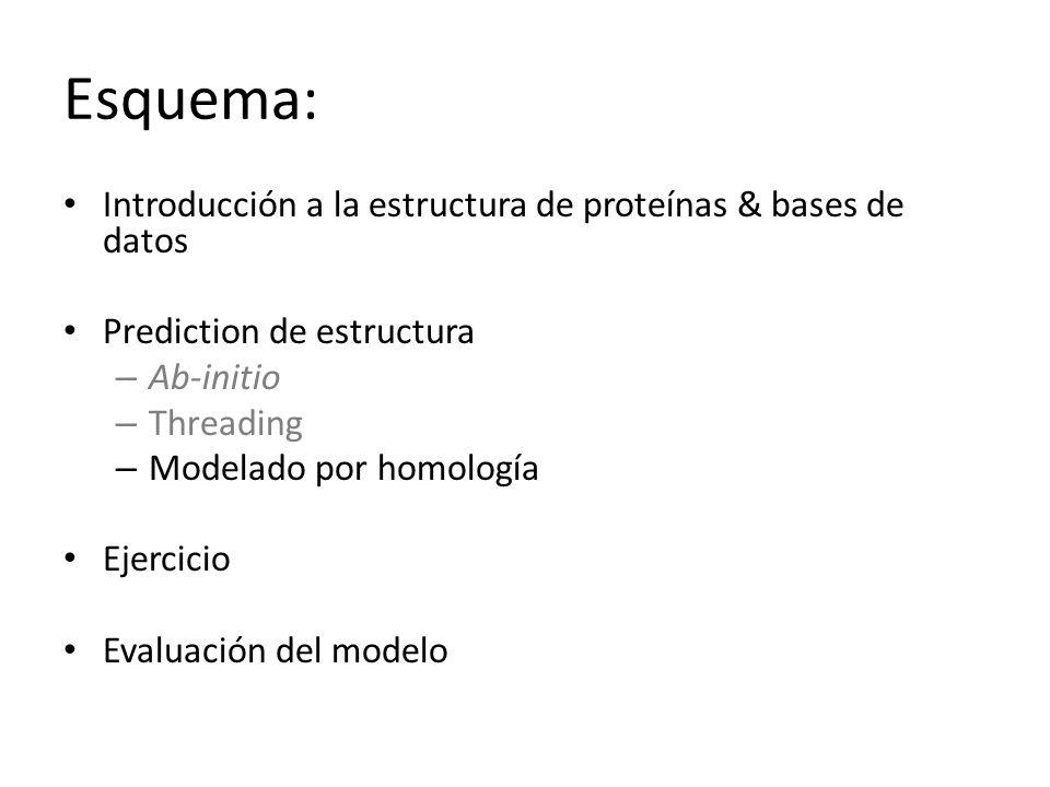 Esquema: Introducción a la estructura de proteínas & bases de datos