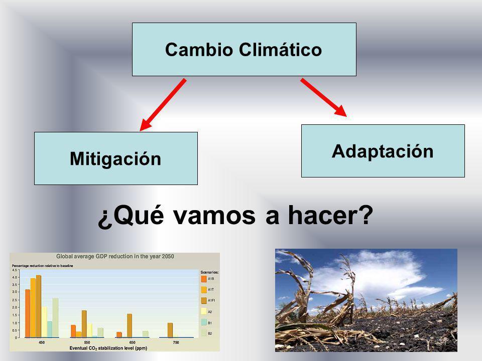 Cambio Climático Adaptación Mitigación ¿Qué vamos a hacer