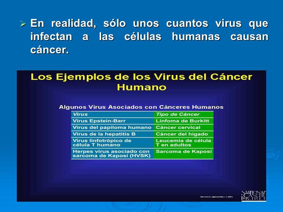 En realidad, sólo unos cuantos virus que infectan a las células humanas causan cáncer.