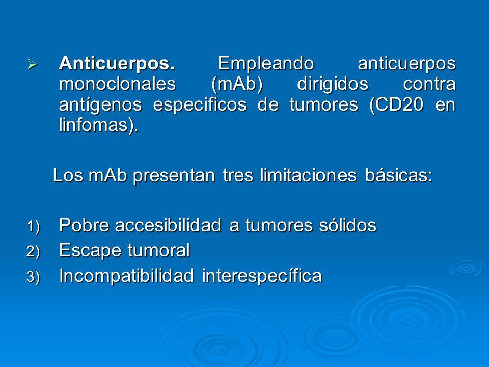 Anticuerpos. Empleando anticuerpos monoclonales (mAb) dirigidos contra antígenos especificos de tumores (CD20 en linfomas).