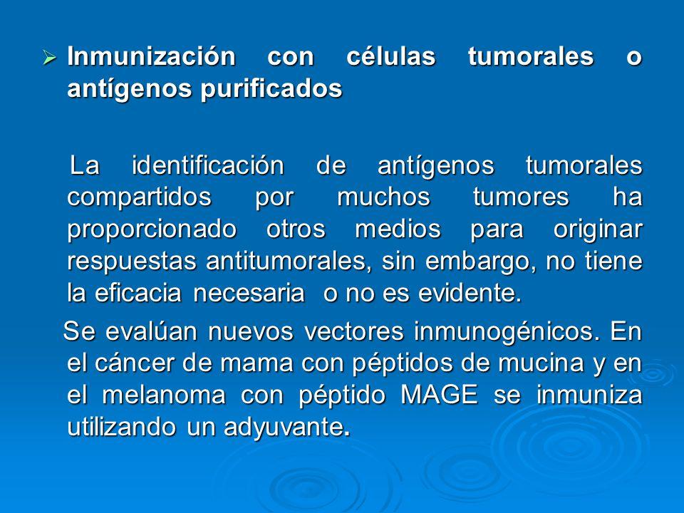 Inmunización con células tumorales o antígenos purificados