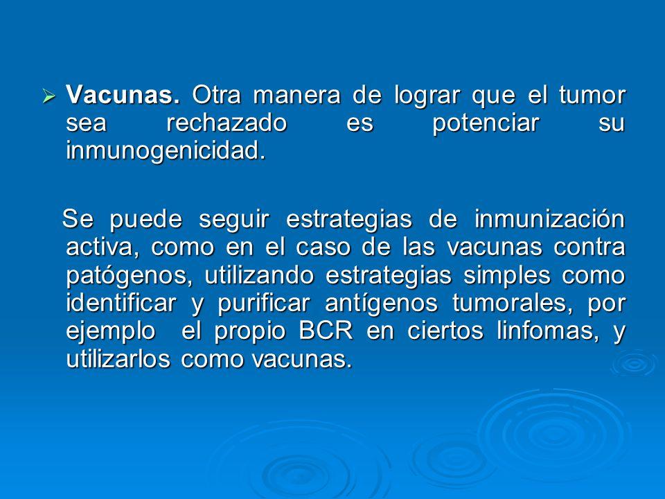 Vacunas. Otra manera de lograr que el tumor sea rechazado es potenciar su inmunogenicidad.