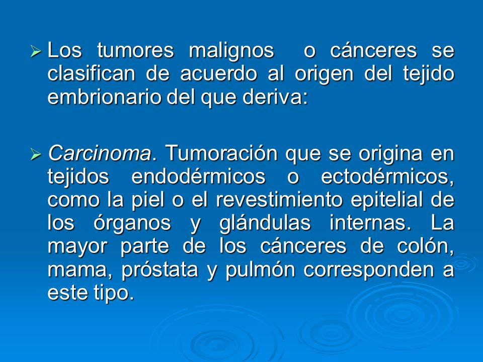 Los tumores malignos o cánceres se clasifican de acuerdo al origen del tejido embrionario del que deriva: