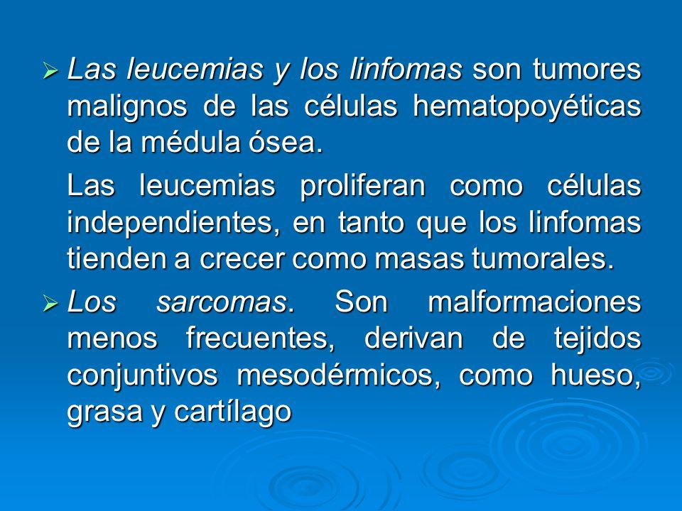 Las leucemias y los linfomas son tumores malignos de las células hematopoyéticas de la médula ósea.