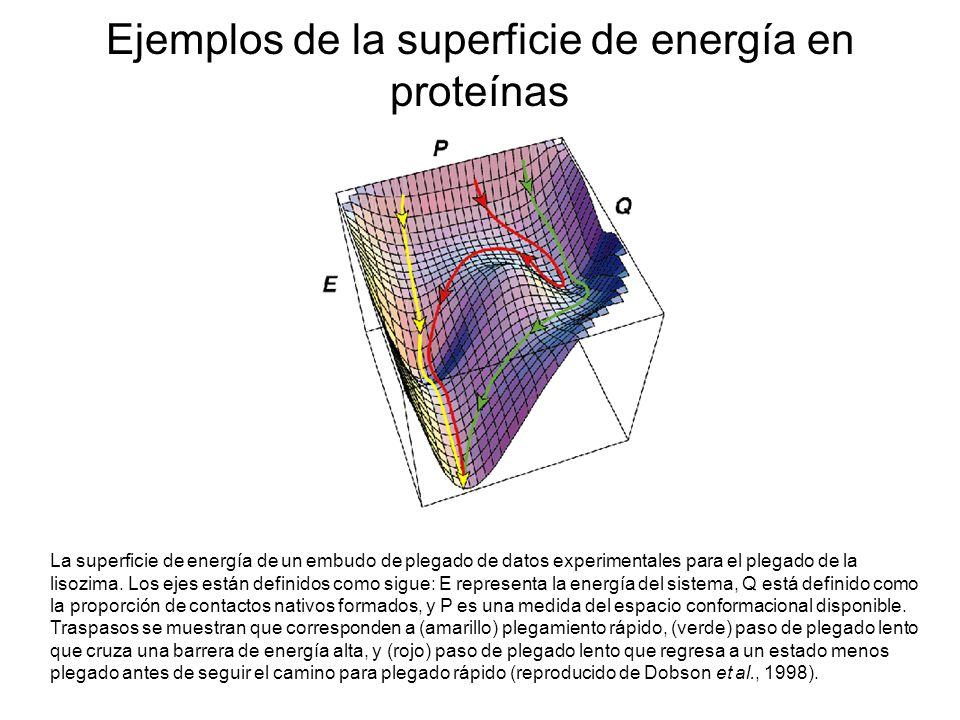 Ejemplos de la superficie de energía en proteínas
