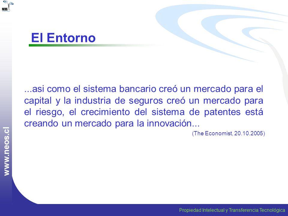 www.neos.cl El Entorno.