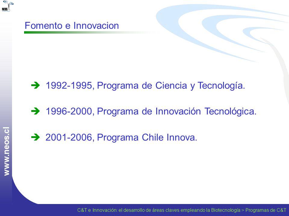 1992-1995, Programa de Ciencia y Tecnología.