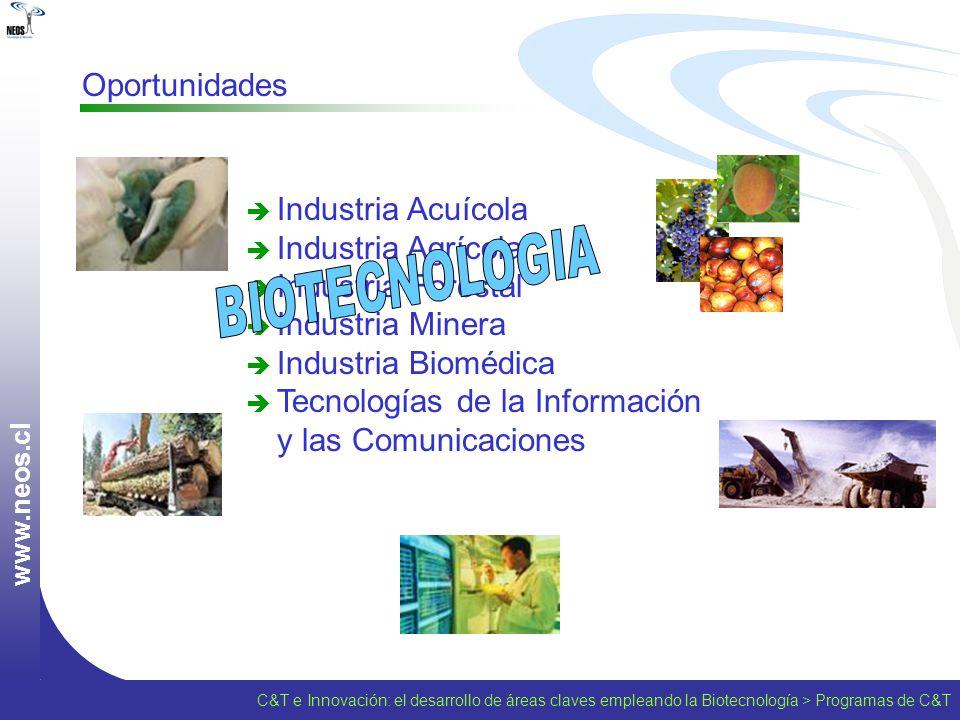 Tecnologías de la Información y las Comunicaciones BIOTECNOLOGIA