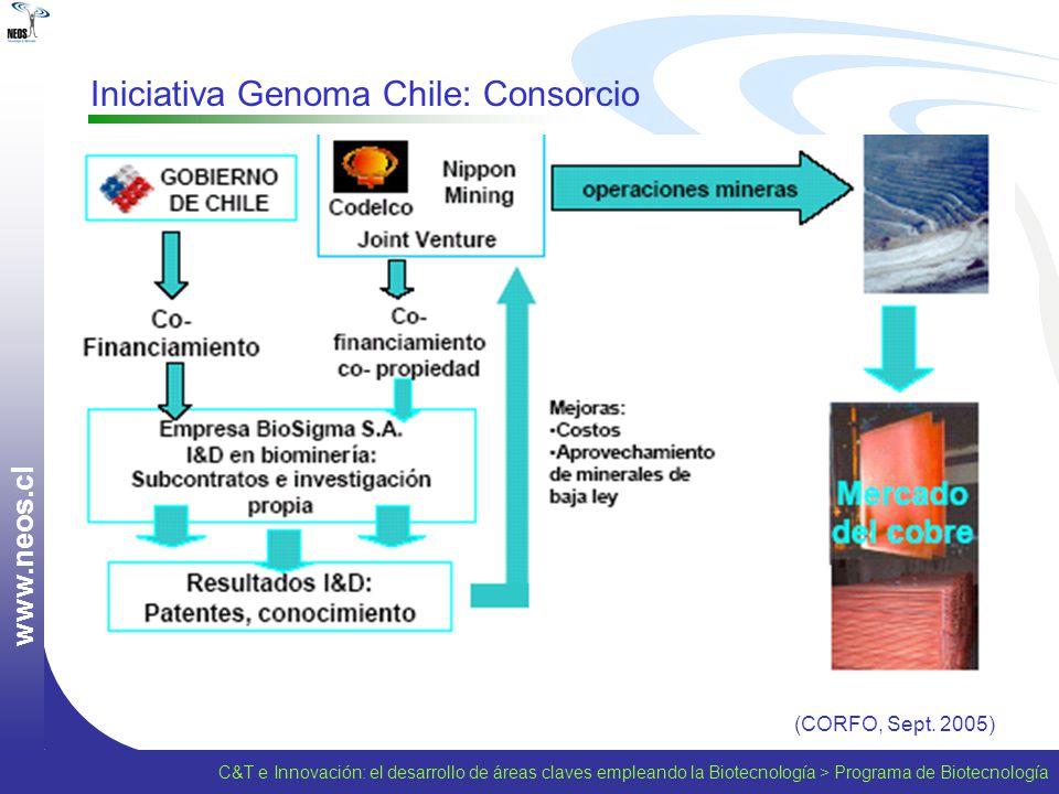 Iniciativa Genoma Chile: Consorcio