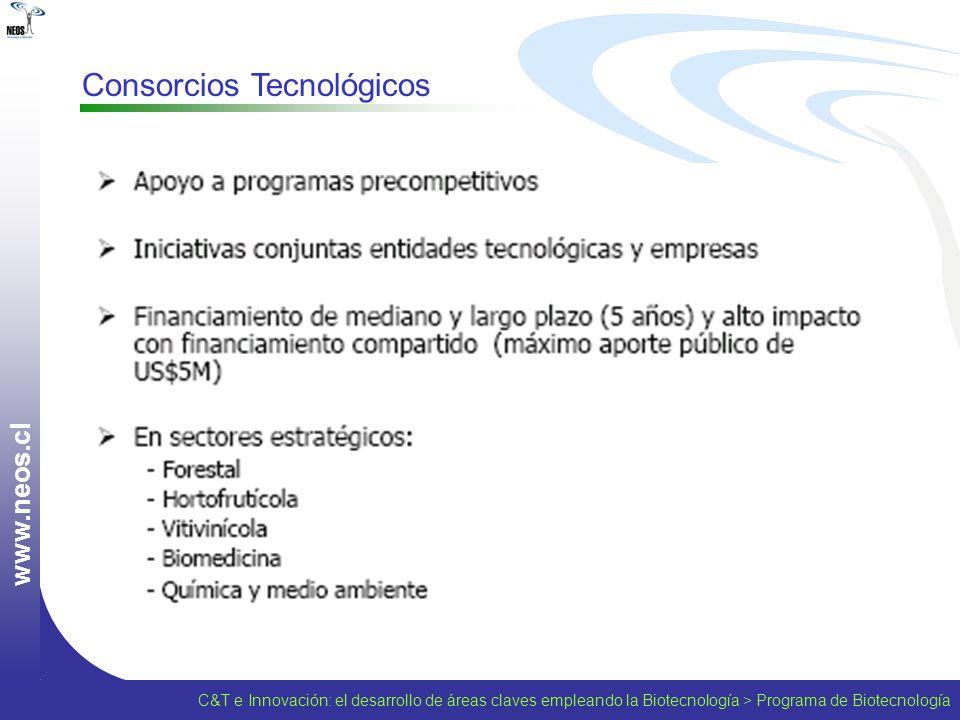 Consorcios Tecnológicos