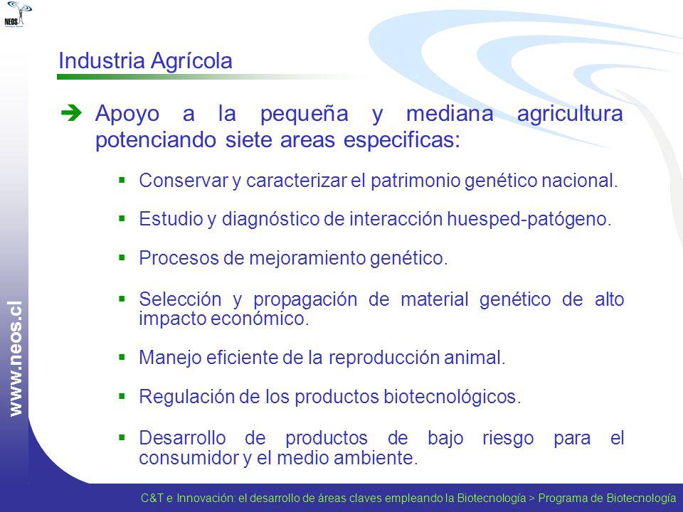 www.neos.cl Industria Agrícola. Apoyo a la pequeña y mediana agricultura potenciando siete areas especificas: