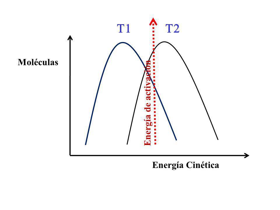 T1 T2 Moléculas Energía de activación Energía Cinética