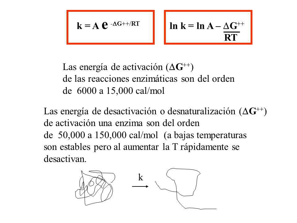 k = A e -DG++/RT ln k = ln A – DG++ RT. Las energía de activación (DG++) de las reacciones enzimáticas son del orden.
